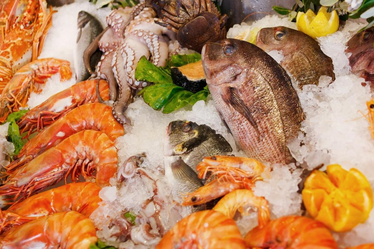 Seafood is one of the food groups that is exceptionally well-suited to be traced via DNA barcoding technology. Processing such as freezing or canning makes it difficult to trace seafood using regular methods.